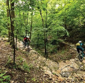Mountain biking trails NWA