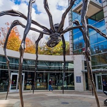 Crystal Bridges Museum Spider
